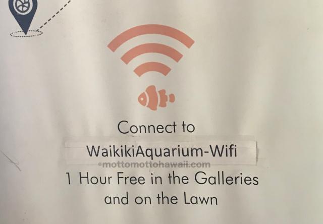 ワイキキ水族館wWifi