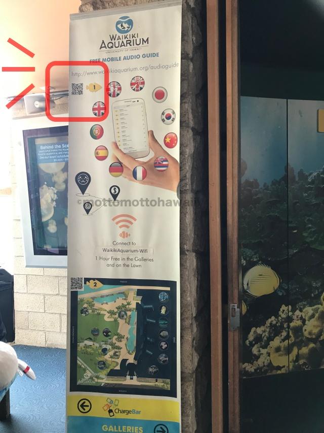 ホノルル水族館の翻訳アプリの説明広告です