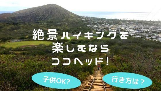 絶景ハイキングを楽しむならココヘッド!