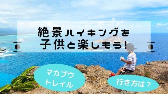 子連れで楽しむハワイのハイキング
