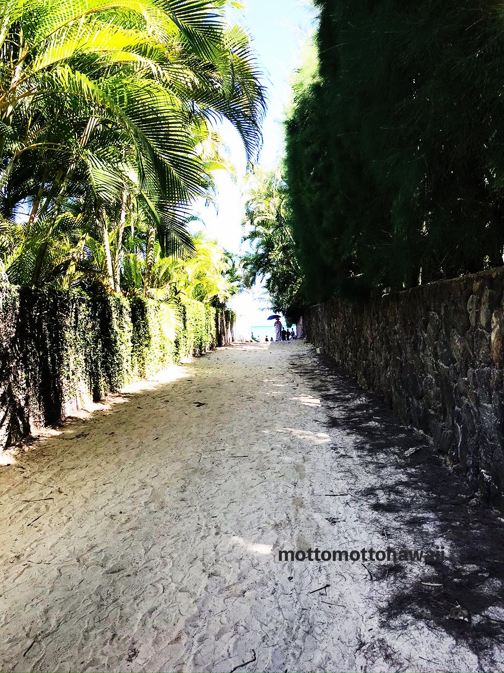 ラニカイビーチの小道